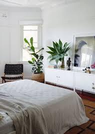 plante verte dans une chambre à coucher impressionnant plante verte dans une chambre 5 avoir une plante