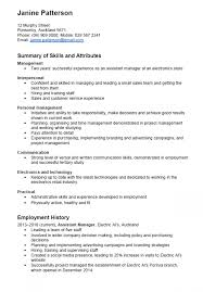 Example Skills Focused CV