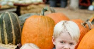 Live Oak Canyon Pumpkin Patch 2015 by Live Oak Pumpkin Patch