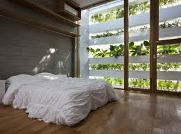 Plants For Bedroom Perfect With Photo Of Interior New On Ideas