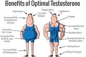 White Pumpkin Seeds Testosterone by Testosterone Boosters Naturally Peacefulmind Com