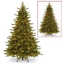 National Tree Company 75 Pre Lit Vienna Fir Christmas With Dual Color