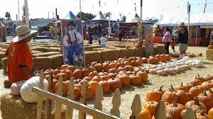 Santa Clarita Pumpkin Patch Festival by Shawn U0027s Pumpkin Patch La Cienega Location L A Parent