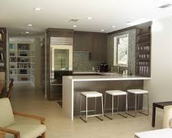 Basement Kitchen Design Ideas Pictures Remodel And Decor Collection