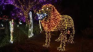 HowlOWeen At The Phoenix Zoo Phoenix Arizona Halloween Special