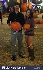 Piedmont Pumpkin Patch by Natta Stock Photos U0026 Natta Stock Images Alamy
