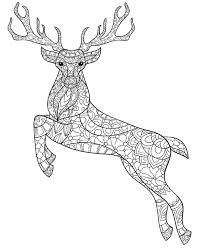 Deer Stag Printable Colouring Pages For Adults
