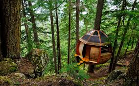 100 Whistler Tree House Theres A Secret House Hiding In The Woods Of