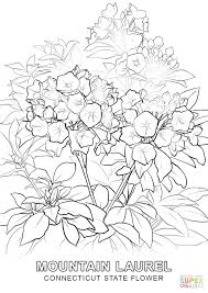 Flower Drawing Games State Coloring Page Free Printable Pages California Sheet