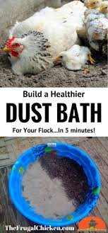 Best 25+ Chicken Bath Dust Ideas On Pinterest | Chicken Coops ... 28 Best Keeping Chickens Warm Images On Pinterest 21 About Raising Chicken Pros And Cons Of Backyard 20 Winter Boredom Busters For Empty Plastic The Chick Quarantine When How Beginners Guide To Sustainable Baby Steps 908 Chickens Thking Raising Quail In Your Backyard Find Out How You Beckys Fresh Eggs Fun Pets In Your Cheap For Meat Find Things I Wish Had Known Before Getting 212