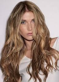 Light Brown Caramel Hair Brown Hairs
