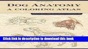 Download Book Dog Anatomy A Coloring Atlas PDF Online