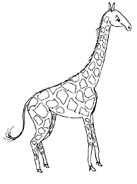 Wonderful Giraffe Coloring Pages Best Book Downloads Design For You