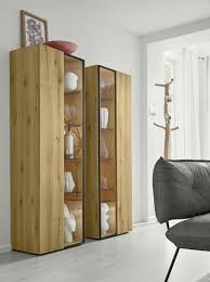 moderne vitrinen holz und glas moderne vitrinen