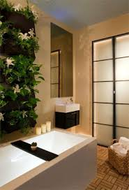 Plants For The Bathroom Feng Shui by Feng Shui Bathroom Plants For Health Wealth U0026 Luck