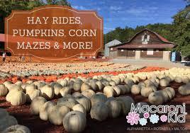 Atlanta Pumpkin Patch Corn Maze by Fall Fun Corn Mazes Pumpkin Patches Apple Picking U0026 Hay Rides