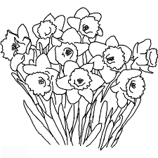 Fresh Coloring Book Pages Of Flowers 91 In Free With