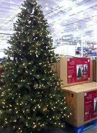 12 Ft Christmas Tree Costco Decoration Lit Trees Elegant 9 Led Easy Light Technology Dual