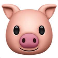 Pig Face Emoji U 1F437
