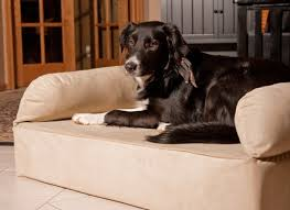 Drs Foster And Smith Dog Beds ] Dr Fosters Dog Beds Dog Beds and