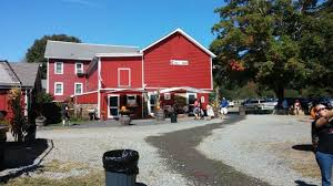 Pumpkin Picking Nj Near Staten Island by Hacklebarney Farm Cider Mill Chester All You Need To Know