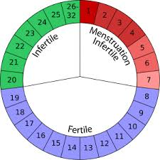 Uterus Lining Shedding All At Once by How To Determine Whether Miscarriage Or Period Ovulation Guide