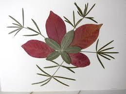 Pressed Flower Card Burgundy leaves Blank Greeting by rosirouge