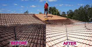 go zeaus roof cleaning brisbane