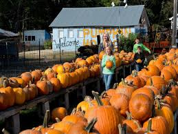 Pumpkin Patch Cleveland Mississippi by 344 Best Arkansas Images On Pinterest Arkansas Little Rock And