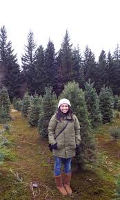 Christmas Tree Watering Funnel Canada by December 2013 U2013 Beauty In Grey Days
