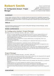 Configuration Analyst Resume Example