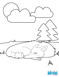 Sleeping Fox Coloring Pages Page Forest Wildlife Animals Animal