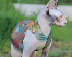 hairless cat price view tattcat pet tops by simplysphynx on etsy