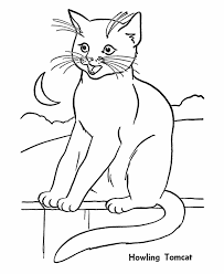 Cat Minecraft Coloring Pages