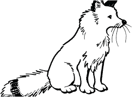 Fox Coloring Pages Realistic Pics Red Sit Page For Toddlers