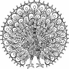 Coloring Pages Hard Butterfly Intricate