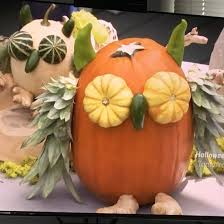 Owl Pumpkin Template Printable by No Carve Pumpkins From The Kitchen On Food Network This Morning