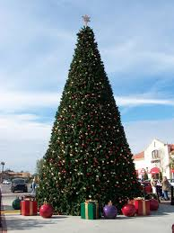 Dillards Christmas Tree Farm by Christmas In Baldwin County Events Activities And Fundraisers