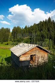 Pine Tree Barn Stock s & Pine Tree Barn Stock Alamy