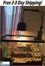 Flukers Sun Dome Clamp Lamp by Fluker U0027s Mini Sun Dome Reptile Lamp 27004 Ebay