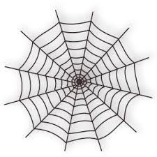 Spider PNG Transparent Free Download