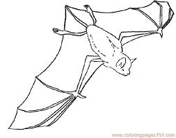 Pages Bat Coloring Mammals Bats Free Printable Page