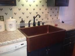 61 best kitchen farmhouse sinks my favorite style gotta get