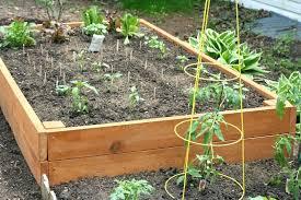 Veggie Garden Box Our Big Pallet