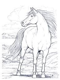 Horse Coloring Pages Printable