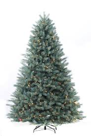 Tree With 1000 Clear Lights