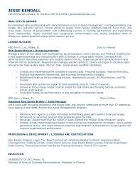 Professional Real Estate Simple Resume Sample