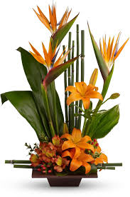 Teleflora's Exotic Grace Save 25% On This Bouquet And Many Others ... 20 Off Flying Flowers Coupons Promo Discount Codes Wethriftcom Daisy Me Rollin By Bloomnation In Ipdence Oh Nikkis 21 Blooms Succulents Box Brighton Mi Art In Bloom Lavender Passion Bouquet Peabody Ma Evans Home For The Holidays By Dallas Tx All Occasions Florist Take Away Daytona Beach Fl Zahns More My Garden Carnival Dear Mom Avas Florist Coupon Code 3ds Xl Bundle Target