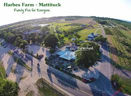 Pumpkin Picking Riverhead by Mattituck Harbes Farm