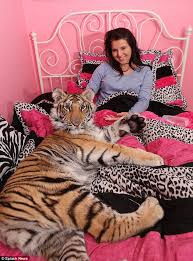 teenage shares bed with a tiger called will it s like